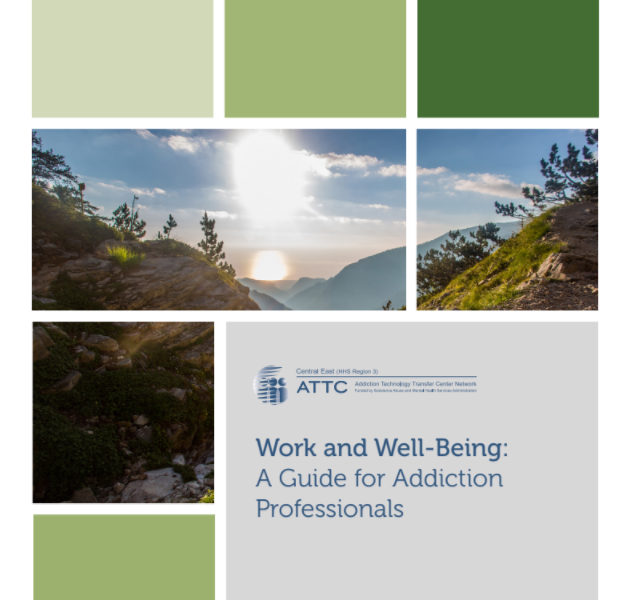 Work and Well-Being: A Guide for Addiction Professionals